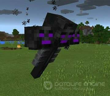EnderWither