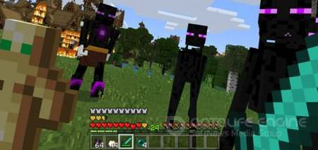 The Ender Boss Addon