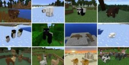 Pocket Creatures Minecraft PE Аддон 1.2.7
