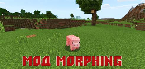 Photo-4-Minecraft-PE-mod-na-mobov